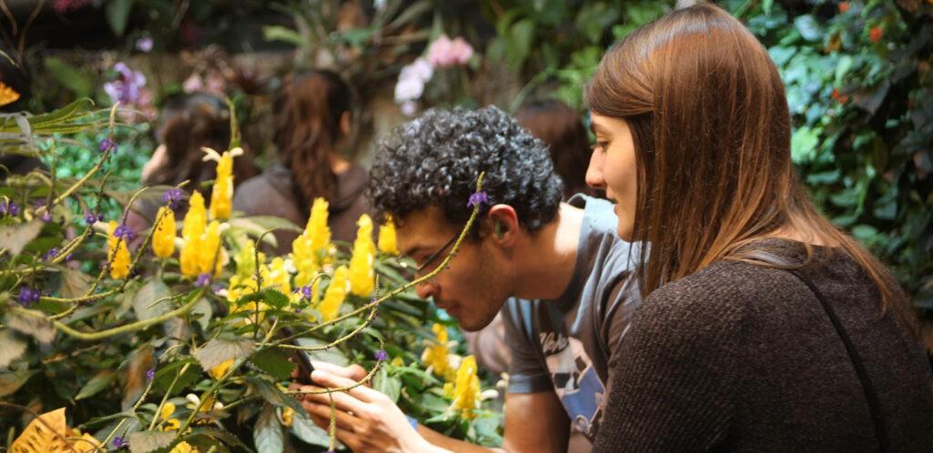 College kids in butterfly garden