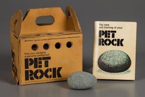 Pet Rock prototype, 1975, Courtesy of The Strong, Rochester, New York.